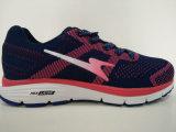 真新しいデザイン女性のための編むスポーツの体操靴