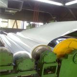 O PE de PVDF revestiu a folha de alumínio para o revestimento da parede de cortina usado