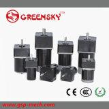 C.C Gear Motor de 15W 60mm