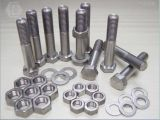 Hex/Stainless Steel/Carbon Steel/Copper Bolts와 Nuts