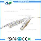 Striscia calda di Epistar SMD3528 LED di vendite con la certificazione del CE dell'UL