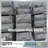 조경 훈장을%s 회색 버섯 벽 클래딩 돌