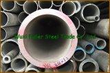 Fornitore della Cina! tubo senza giunte dell'acciaio inossidabile 304L