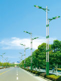 Jiansheng enciende la luz de calle solar de los 8m poste 60W LED