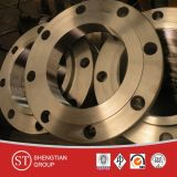 Tutto il Kinds di Flanges/Carbon Steel Flanges/Sorf/Wnrf/Blind Flanges