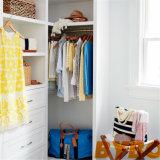 Azzurro e camminata grigia in armadio con i portelli rispecchiati dell'armadio (BY-W-23)