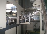 Linear Strech Blasformen Maschine mit CE