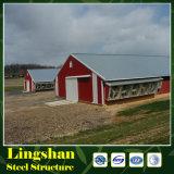 Prefabricated 보일러 가금 농장 집 디자인