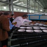 Forno de vidro horizontal da produção