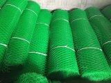 HDPE Plastikineinander greifen, flache Plastikfiletarbeit, Hex Plastikineinander greifen (China-Fabrik)