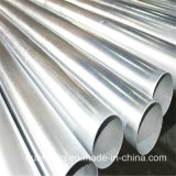 Q195 Q235 Pre Galvanized Steel Pipe für Greenhouse