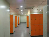 Athletic Centerのための上ABS Plastic Locker