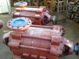 O Dg datilografa a bomba de alimentação horizontal da água da caldeira
