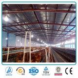 Vertiente industrial modular del pollo de las aves de corral del edificio agrícola de la estructura de acero