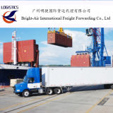 Remetente do transporte do oceano do serviço da logística de China a Amsterdão, Países Baixos de Rotterdam