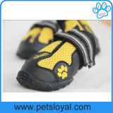 Soli pattini antiscorrimento robusti del cane corrente dell'animale domestico per fare un'escursione