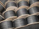 """Faisceau 1/8 de chanvre de la corde 6X19 de fil d'acier d'Alambre Acero Galvanizado de câble """""""