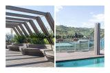Decking плавательного бассеина высокого качества WPC составной с самым лучшим ценой