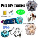 IP66 Waterproof o perseguidor do GPS dos animais de estimação com cobrar do rádio (V32)