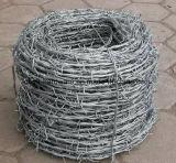低価格の中国の工場からのBwg14#*14#Galvanizedの有刺鉄線