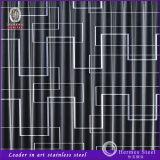 Coupeur de laser d'acier inoxydable de Foshan