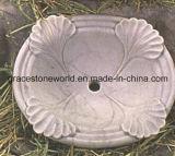 Раковина высеканная мрамором (GS-S-001)