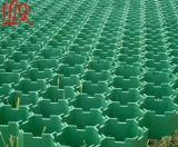 بلاستيكيّة عشب راصف شبكة لأنّ [بركينغ لوت]/منظر طبيعيّ