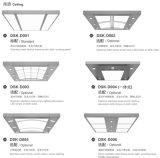 Spiegel-Radierungs-Passagier-Höhenruder mit konkurrenzfähigem Preis