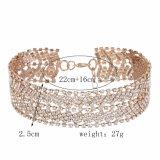 Оптовое полное ожерелье способа Fashionista диаманта