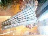 Chopsticks de bambu descartáveis de bambu do folheado do pacote