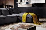 2016 새로운 현대 우아한 디자인 거실 직물 부분적인 소파 (HC8110B)
