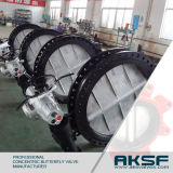 Soft Sealing Worm Gear Double Eccentric Flang Butterfly Valve