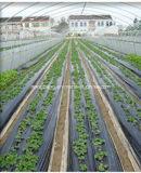 農業のための高品質の景色ファブリック