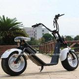 新しい1000WオートバイのHarleyの電気スクーターはとの電池を除去する