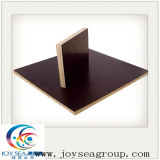 18mm Film Faced Plywood voor Construction