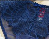 Cordón atractivo Panty del diseño europeo y sujetador