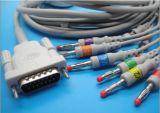 ECG Kabel mit 10 Leitungskabeln