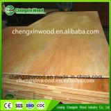 Preço da vária madeira compensada laminada colorida decorativa