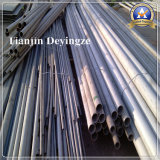 Roestvrij staal Golf Naadloze Buis van de Pijp 302 304 310S 409