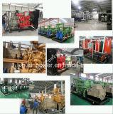 Conjunto gasógeno/Genset de Cogenerator/CHP del generador del gas del terraplén/del gas