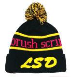 La manera del estilo hizo punto el casquillo bordado casquillo del invierno del sombrero de la gorrita tejida (S-1017)