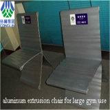 알루미늄 합금 밀어남 의자 단면도