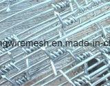 입히는 PVC 또는 Glavanize 철 강철 가시철사