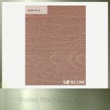 Chapa de aço 304 inoxidável gravada revestida cobre para o material de construção