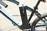 o pedal 350W ajudou à E-Bicicleta para o país de Europa
