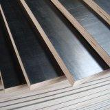 La película de los materiales de construcción hizo frente a la madera contrachapada con la película de Brown