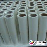 Buona carta da trasporto termico chiara lavabile per uso della stampante di Roland