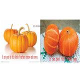 Gourd Peeler воска плодоовощ Двойн-Головки, машина шелушения арбуза тыквы (FXP-99)