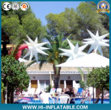 Fantasis Bright Wedding/Party/Event Decoration с СИД Inflatable Star