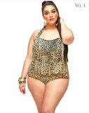 Heißer Verkaufs-Blumen-Troddel-Bikini-Badebekleidungs-Einteiler plus Größen-Strand-Bikini-Badebekleidung